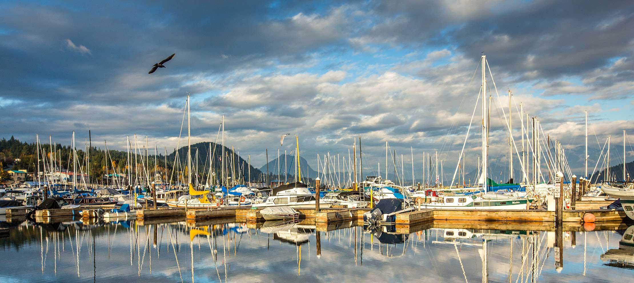 Boats in the marina